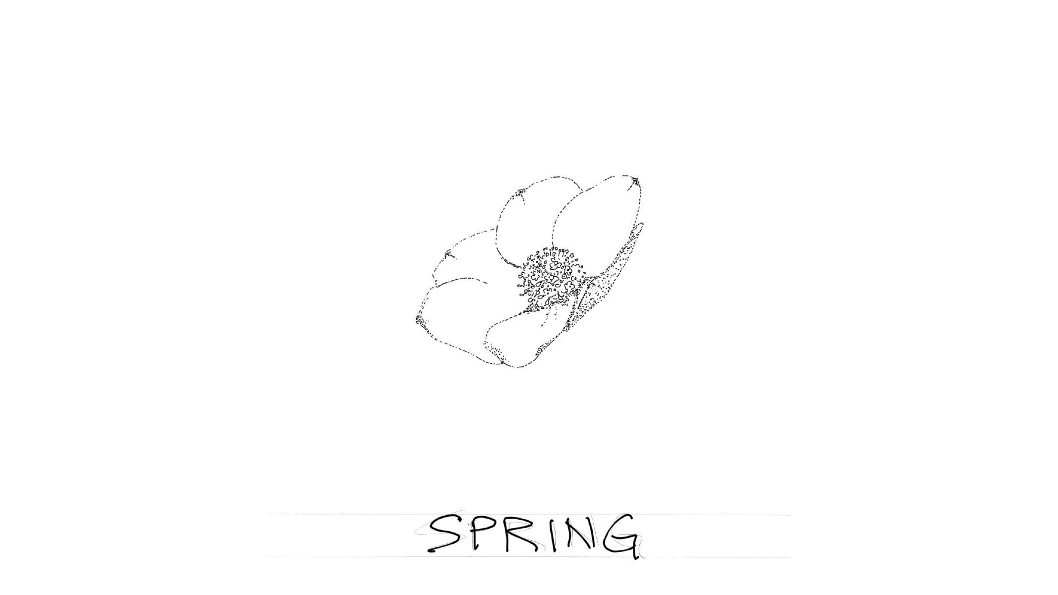 Flashcard: Spring