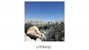 Flashcard: Spare